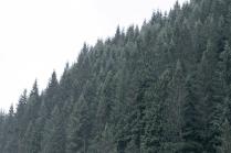 paisajes3a