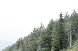 paisajes3b