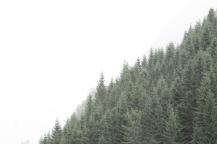 paisajes3c