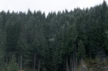 paisajes5