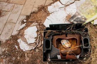 camping19
