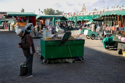 marrakech-calle60