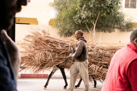 marrakech-calle79