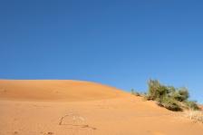 marrakech-paisajes19