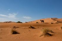 marrakech-paisajes26