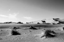 marrakech-paisajes26b